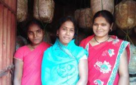 बिहार में एक गांव ऐसा भी, घर-घर महिलाएं उगा रहीं मशरूम…