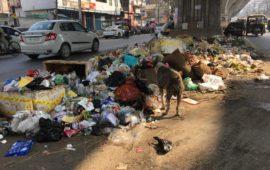 चेतावनी: पटना में पसरा कूड़ा शहर को बीमार, बहुत बीमार कर सकता है…