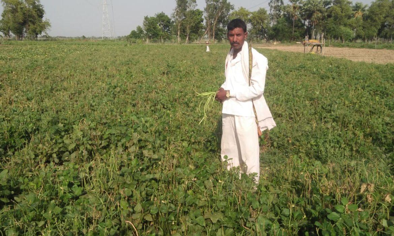 वित्त मंत्री के पिटारे में लॉकडाउन और प्रकृति की दोहरी मार खा रहे किसानों के लिए क्या?